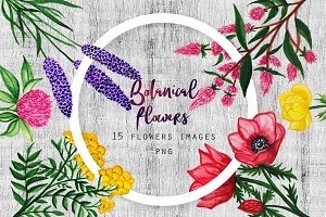 Watercolor Botanical Flowers