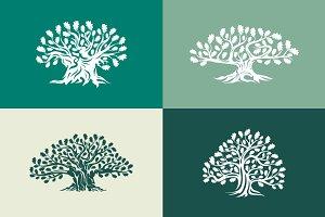Isolated oak tree vector set