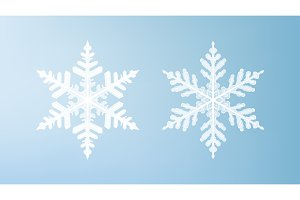 White snowflakes isolated on light blue background