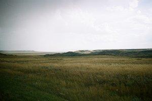 Moody Prairie Landscape