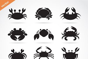 Set of vector crab icons. Animal.