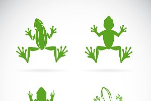 Vector group of frogs design. Animal