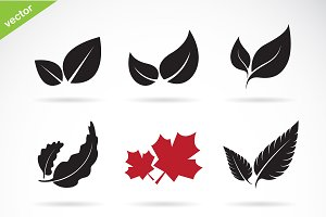 Vector of a leaves icon set.