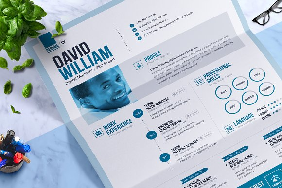 word resume cv template design