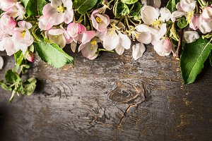 Spring blossom flowers on wooden