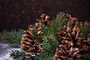 Pine cones and fir branches.