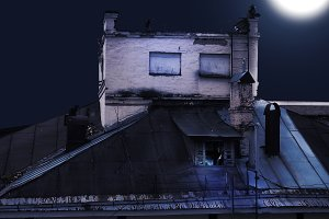 Night. The roof of the old house, th
