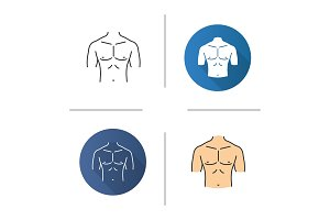 Muscular male chest icon