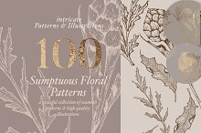 Floral Patterns & Illustrations