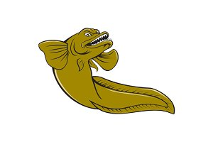 Eelpout Fish Angry Cartoon