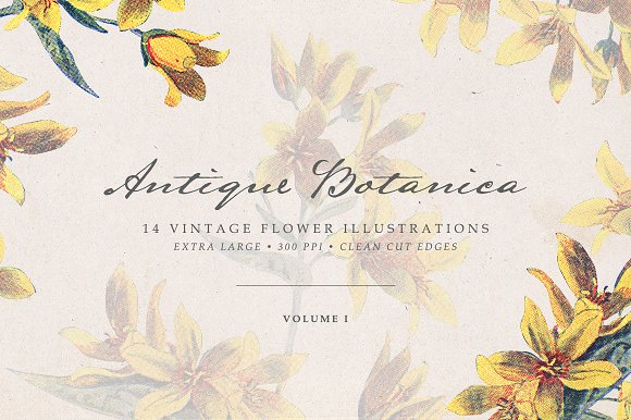 Vintage Flowers Vol.01 - Ex-Graphicriver中文最全的素材分享平台