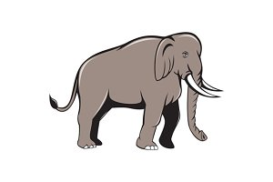 Indian Elephant Side View Cartoon