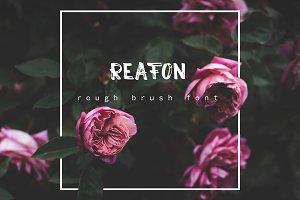 Reafon. Brush Font