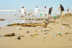 People clean trashy polluted beach