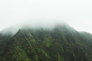 Hawaiian Fog