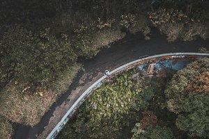 Hawaiian Abandoned Bridge