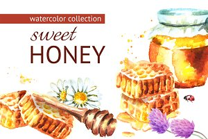 Sweet honey. Watercolor collection