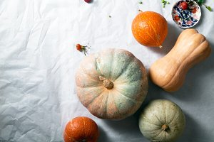 Variety of pumpkins on white