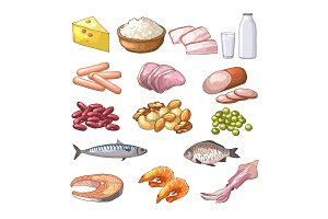 Illustrations of different products which contains protein. Vector pictures in cartoon style