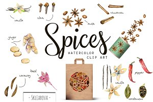 Spices. Watercolor clip art.
