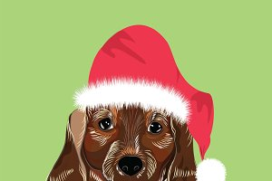 dog breed dachshund christmas red po