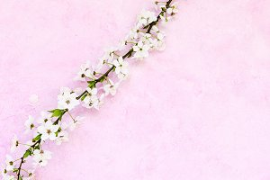 Grunge floral background