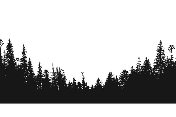 forest silhouette backdrop