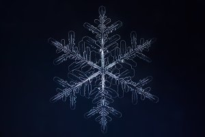 White snowflake on the dark blue background