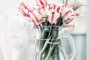Bunch of tulips in glass vase