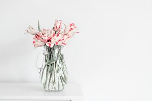 Tulips in vase on white table