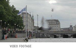 Hamburg quay
