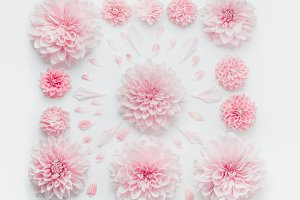 Pastel pink flowers composition