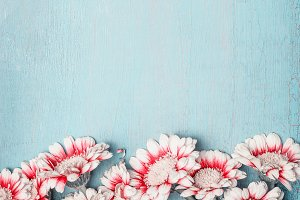 Flowers on light blue shabby chic