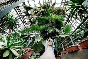 Couple poses in an old green house