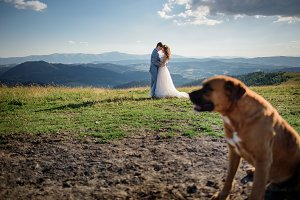 Dog sits before wedding couple