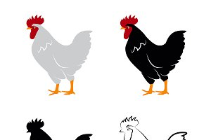 Vector of chicken design.