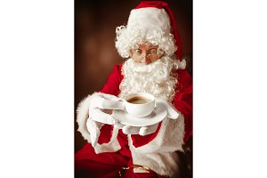Portrait of Man in Santa Claus Costume