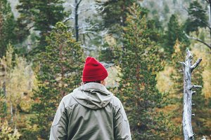 Man traveler in coniferous forest