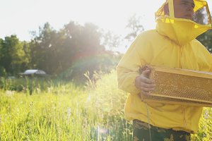 beekeeper man with wooden frame walking in blossom field while working in apiary