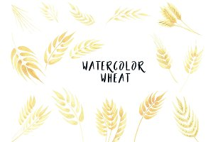 Watercolor Wheat