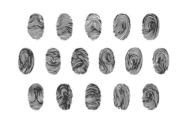 Fingerprint illustration