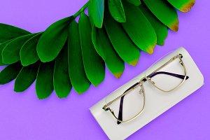 Eyewear Stylish accessories. Flat l
