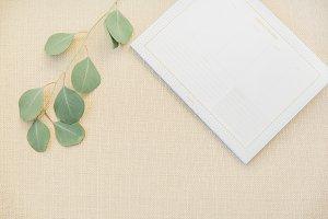 Styled Greenery Stock Image