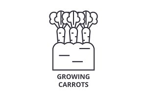 growing carrots line icon, outline sign, linear symbol, vector, flat illustration