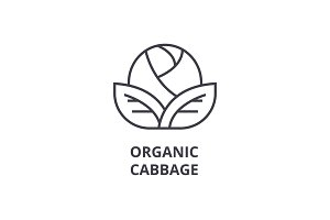 organic cabbage line icon, outline sign, linear symbol, vector, flat illustration
