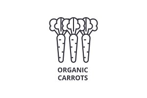 organic carrots line icon, outline sign, linear symbol, vector, flat illustration