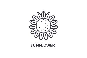 sunflower line icon, outline sign, linear symbol, vector, flat illustration
