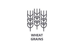 wheat grains line icon, outline sign, linear symbol, vector, flat illustration
