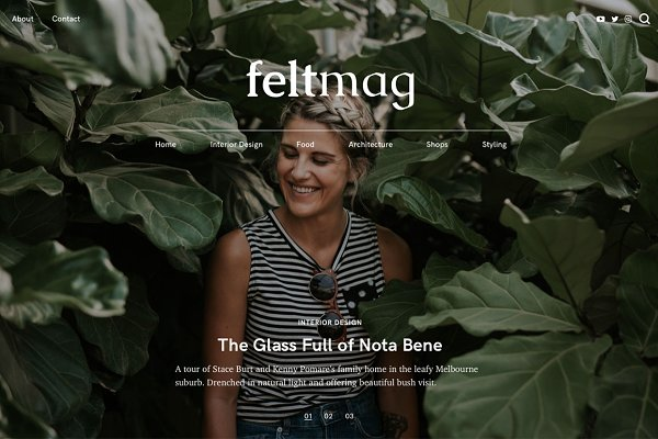 WordPress Magazine Themes: Pixelgrade - Felt - Magazine Style Theme