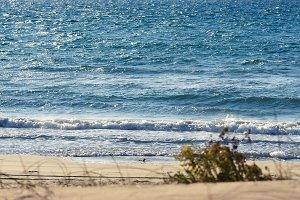 Sea & Sand Dunes